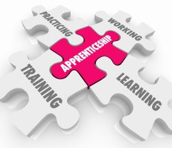 Why employ an apprentice in your business?